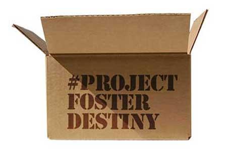 #ProjectFosterDestiny